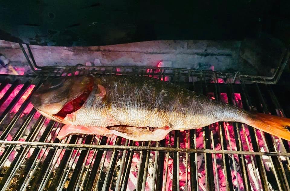 El besugo está considerado como el rey de los pescados en Japón desde tiempos inmemoriales. Es uno de los manjares más apreciado en las grandes celebraciones.