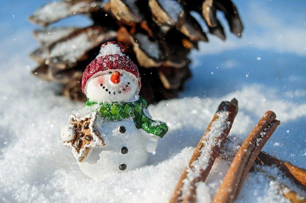 Arriba la Nit de Nadal i el dia de Nadal 2020 i, qui més qui menys, comença a pensar i preparar els sopars o dinars els dies de Nadal i Sant Esteve a Borda Xixerella pots reservar la teva taula