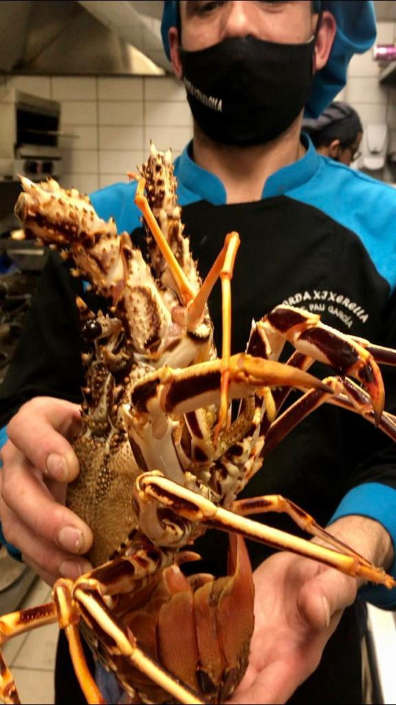 Llagosta del Cantàbric de 2,5 kg El color de la seva cua i la seva forma de ventall, indica la procedència de la llagosta, més saborosa i de carn llisa si habita al mar Cantàbric.